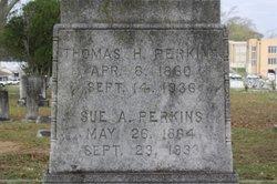 Sue Anna <i>Martin</i> Perkins
