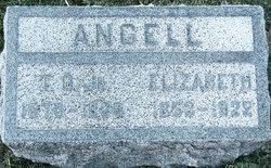 Truman Osborn Angell, III