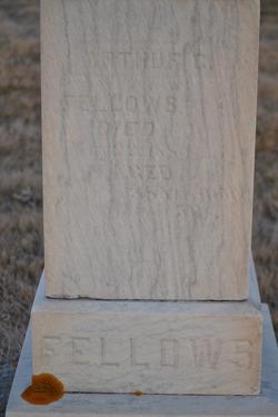 Arthur G. Fellows