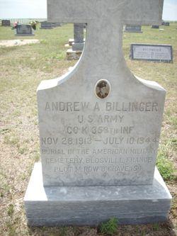 Andrew A Billinger