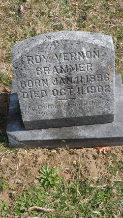 Roy Vernon Brammer