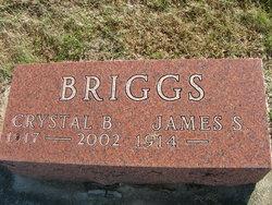 James S Briggs