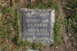 Cindy Lee Lambert