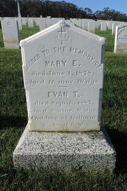Evan T Boyle