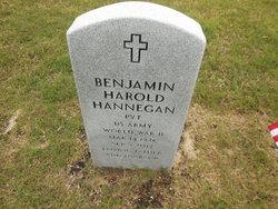 Pvt Benjamin Harold Hannegan