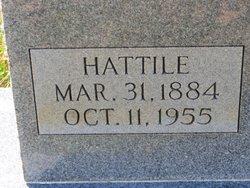 Hattile Paddock