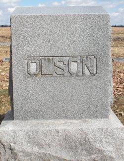 Dena Mary <i>Gifford</i> Olson
