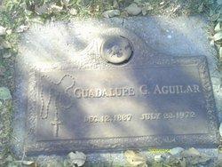 Guadalupe A Aguilar