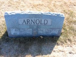 Delta <i>Blue</i> Arnold