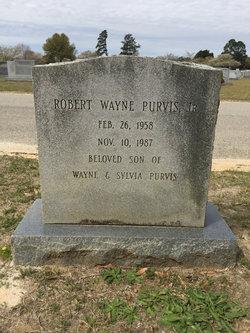 Robert Wiley Purvis, Jr