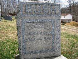 James Carrico Bush