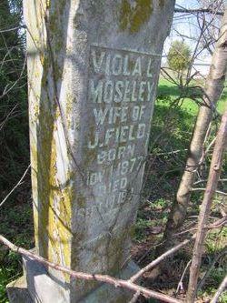 Viola <i>Moseley</i> Field