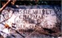 Cassie Velvet <i>Basil</i> Chapman