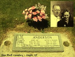 Andy Lee Anderson