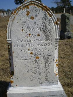 Abigail <i>Sears</i> Doane
