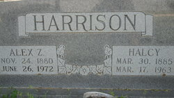 Alexander Z Alex Harrison