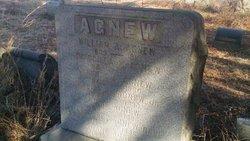 George E Agnew